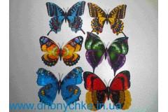 Метелик - магніт